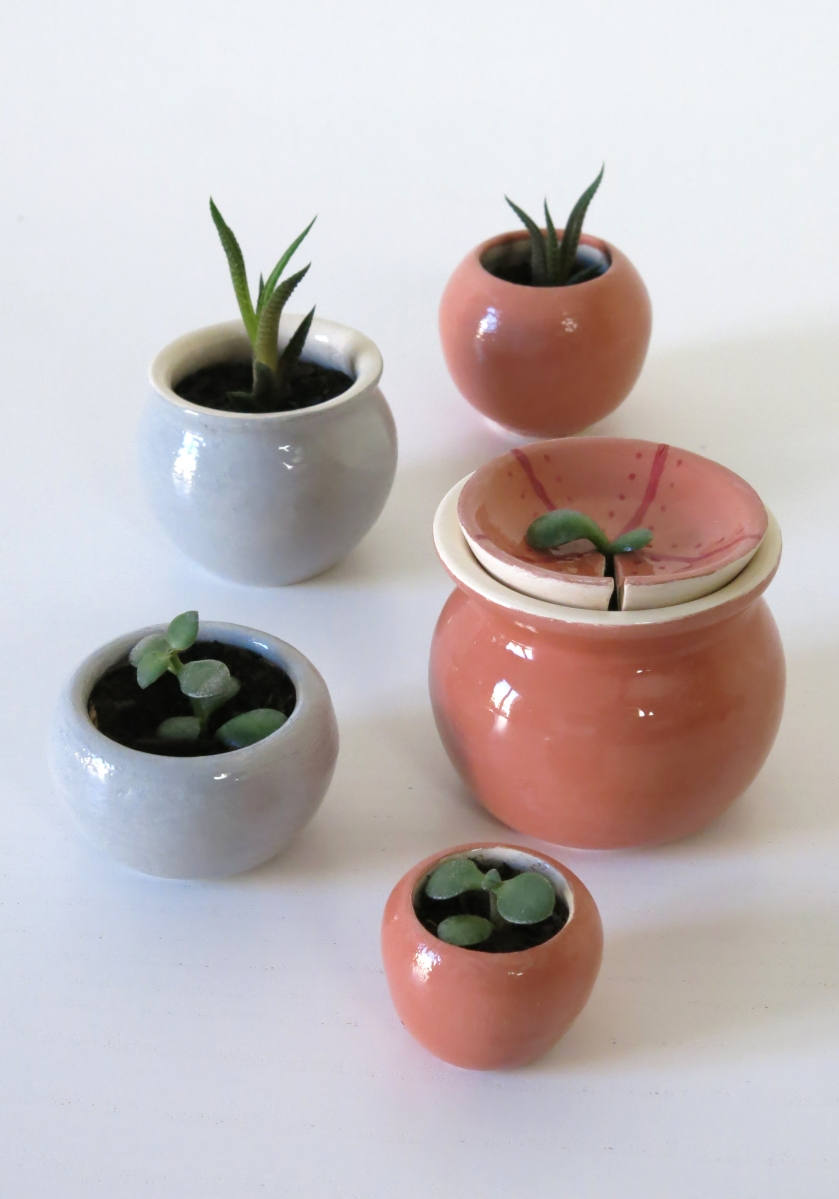 miniature plant pots luiza barroso. Black Bedroom Furniture Sets. Home Design Ideas
